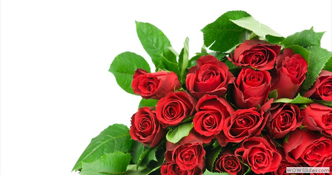 Flower delivery colorado springs co same day flower delivery flower delivery flower delivery mightylinksfo Images