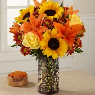 Birthday Flower Delivery in Colorado Springs, CO